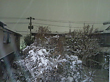 Dsc_0469