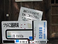 tsuchinoko