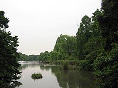 Kyonoinogashira