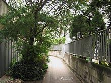 Midorinouramichi