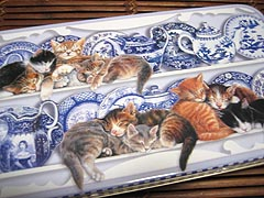 Kittens_can